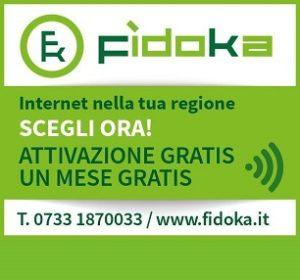 fidoka306